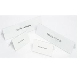 REXEL NAME PLATES Large 210x59mm